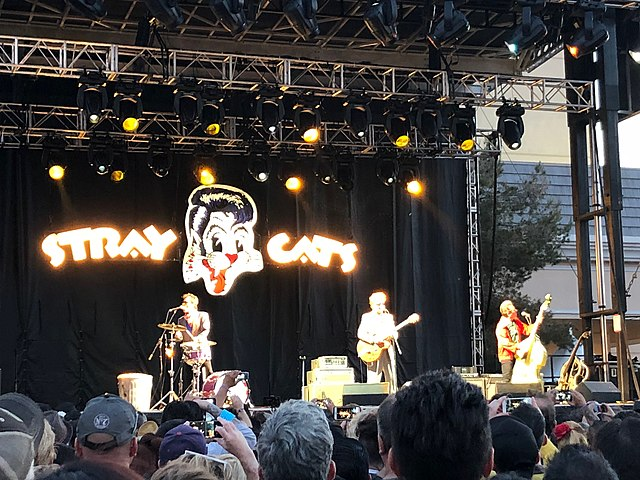 Stray Cats Albums